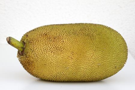 south east: Giant jackfruit of South East Asia India Goa.