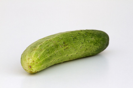 rosids: A fresh and tasty green vine ripened garden grown cucumber isolated on white. Stock Photo