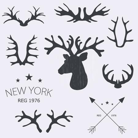 horny: Deer horns elegant set. Vector illustration.