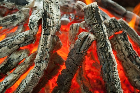 charred: Beautiful fire with flames charred wood.