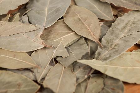 hojas secas: Las hojas secas de laurel con semillas de pimienta negro, una bonita foto para revistas culinarias.