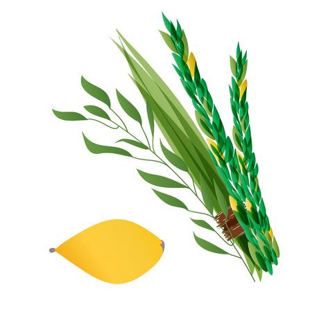 ユダヤ人の休日の仮庵の祭りの 4 種 - パーム、柳、マートル、レモン - シンボルの Vetor イラスト。休日の仮庵の祭りの図。