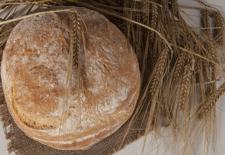 spikelets: White loaf of homemade bread on a table with rye spikelets and oats