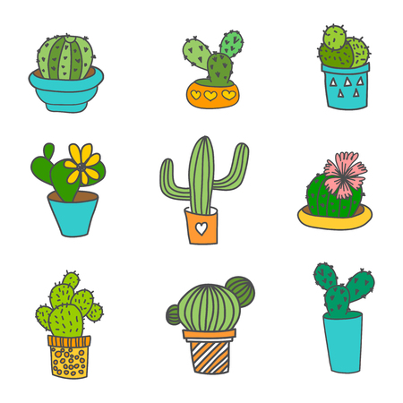 types of cactus: Hand Drawn Cactus Icons Set. 9 different types of cactus. Can be used as web, poster print, t-shirt print or logo design