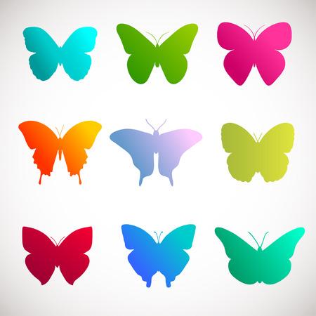 mariposa: Vector colección de mariposas. Colores brillantes mariposas sobre fondo blanco. Rosa, verde, amarillo y violeta mariposas ilustración Vectores