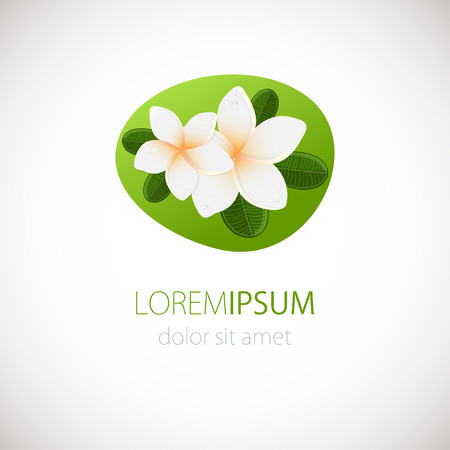 candid: White plumeria flower logotype. Vector illustration of white Two Frangipani flowers with green leaves. Spa or beauty center logo. Illustration