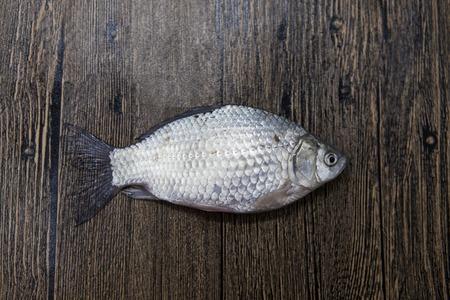 gibel: Fresh raw fish carp caught lying on a wooden stump. Live fish crucian Carassius auratus gibelio Stock Photo