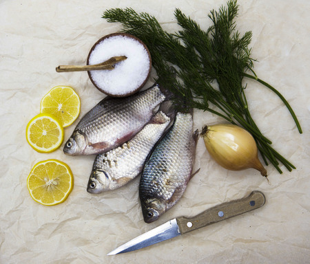 gibel: A  fresh carp live fish lying on a on paper background with a knife and slices of lemon and with salt dill. Live fish crucian Carassius auratus gibelio.