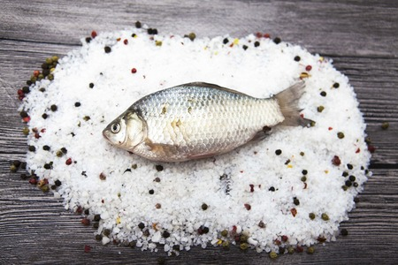 carassius gibelio: A  fresh carp live fish lying on a on salt and pepper background with slices of lemon and with salt dill. Live fish crucian Carassius auratus gibelio
