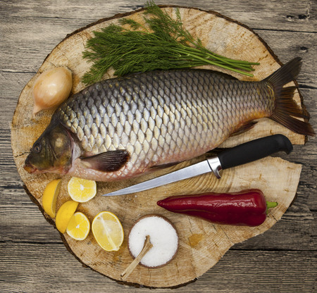 carassius gibelio: Fresh raw fish carp caught lying on a wooden stump with a knife and slices of lemon and with salt dill. Live fish crucian Carassius auratus gibelio Stock Photo