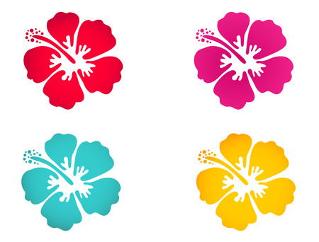 swimwear: Hibiscus flower set in bright colors. Surfing, holiday and tropical symbol
