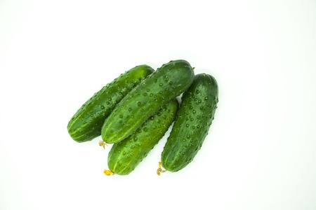 rosids: Fresh appetizing tasty cucumbers on a white background