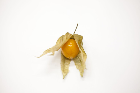 cape gooseberry: Fresh berry of cape gooseberry on a white background