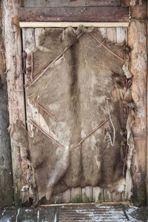 vikings: Old leather door in the village of Vikings . Stock Photo