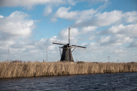 river banks: Thickets of a cane on the background of the Dutch wind mill.Traditional dutch windmill near the canal. Netherlands. Old windmill stands on the banks of the canal, and water pumps. White clouds on a blue sky, the wind is blowing. Stock Photo