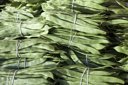 Bundles of fresh green beans . Green beans, Hanging haricot bean, Phaseolus vulgaris pods alone. Cluster beans. Stock Photo