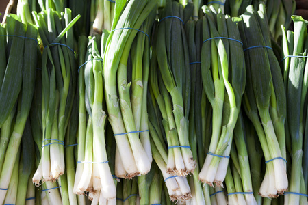 green onions: Green onions, fresh bundles lay on the counter of a village market Stock Photo