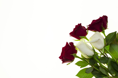Beautiful roses in the bouquet, background for wedding cards, greeting card for birthday