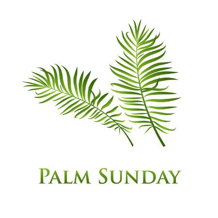 Palmbladeren vector pictogram. Vectorillustratie voor de christelijke vakantie Palmzondag. Belettering citaat en twee palmtakken