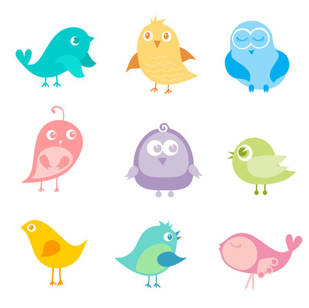 Set of different cute birds Illustration