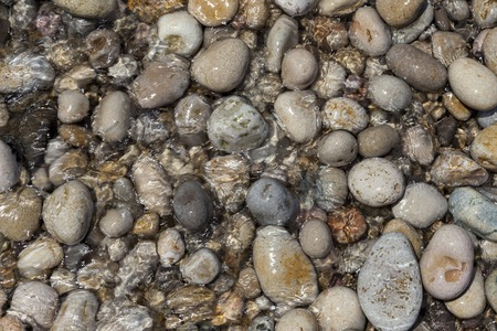 Large wet sea pebbles. Stone background for tiles, facades of houses Stock Photo