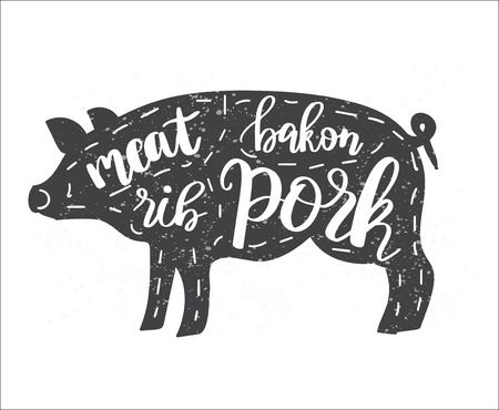 Vector illustration with pig silhouette and lettering text on it. Vintage style drawing with chalk on chalkboard background. Can be used for web, print, butchery shop, meat restaurant