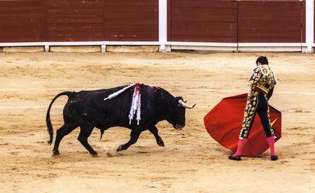 Spanish bullfight. .The enraged bull attacks the bullfighter. Spain Monumental Corrida de toros Stock fotó