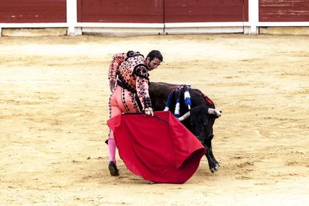 The battle of the bull and man.The enraged bull attacks the bullfighter Spain 2017 07.25.2017. Vinaros Monumental Corrida de toros. Spanish bullfight.