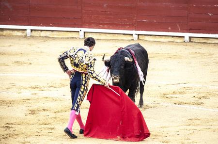 Spanish bullfight. .The enraged bull attacks the bullfighter. Spain Monumental Corrida de toros