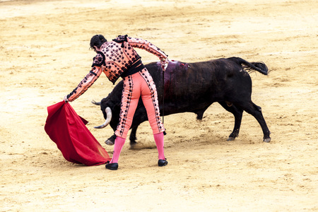 The battle of the bull and man.The enraged bull attacks the bullfighter Spain 2017 07.25.2017. Vinaros Monumental Corrida de toros. Spanish bullfight.