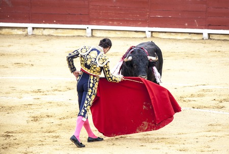 Spanish bullfight. .The enraged bull attacks the bullfighter. Spain Monumental Corrida de toros 免版税图像