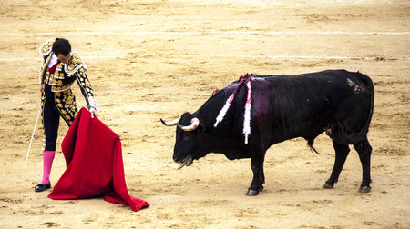 The fight of a bull and bullfighter. Spanish bullfight. .The enraged bull attacks the bullfighter. Spain Monumental Corrida de toros