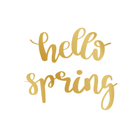 Hand lettered inspirational quote Hello Spring. Hand brushed ink lettering. Modern golden brush calligraphy on white background. Vector illustration.