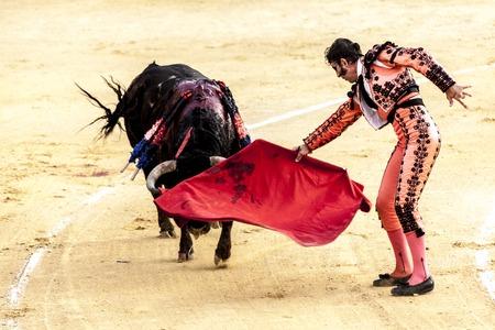 The last battle of the bull.The fight of a bull and bullfighter. Spanish bullfight. Corrida de toros. Imagens