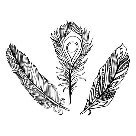 Illustration vectorielle d'un ensemble de plumes dans un style graphique noir et blanc Vecteurs