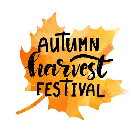 Hand sketched autumn lettering Harvest Festival. Modern brush calligraphy. Handwritten vector illustration isolated on white background for cards, posters, banners, logo, tags. 일러스트