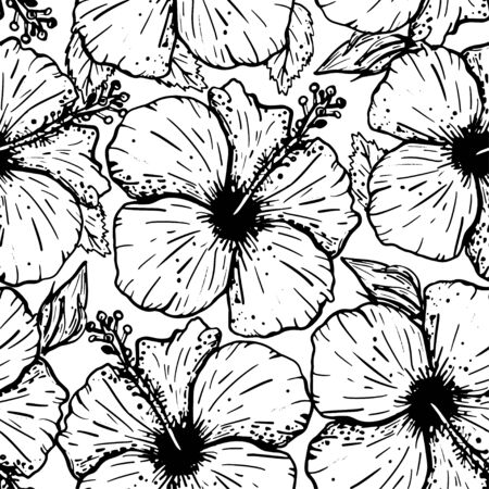 Seamless graphical artistic tropical nature pattern, rain forest floral print, stylish background with hibiscus flowers and leaves. Black and white vector illustration