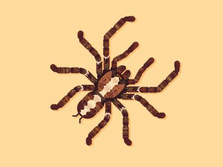 Spider Tarantula. Vector Illustration