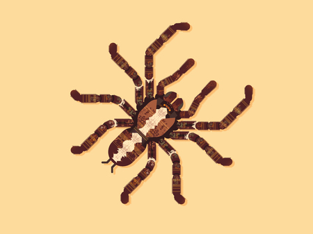 Spider Tarantula. Vectorillustratie