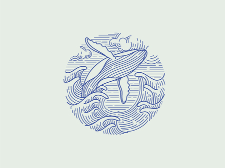 breaching humpback whale logo Vectores