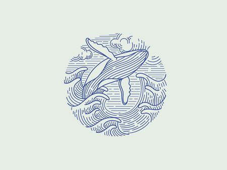 breaching humpback whale logo Vettoriali