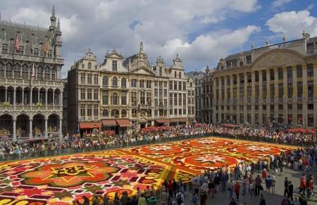 belgie: Flower Carpet in Brussel uitzicht vanaf de gemeenteraad