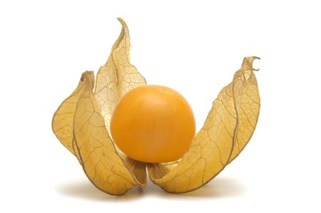 husk tomato: Physalis on white bacground