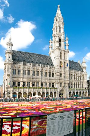 Brussels Grand Square with the town  and the traditional largest flower carpet in the world.