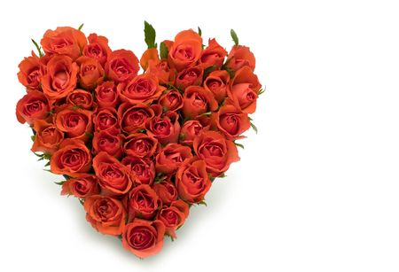 bunch of red roses: Heart of roses on white background