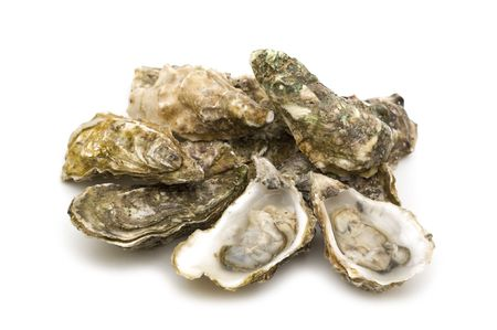 opened oysters on white background
