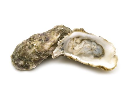 aphrodisiac: opened oysters on white background