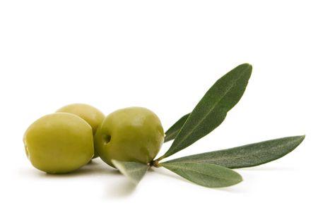 白地にグリーン オリーブ 写真素材