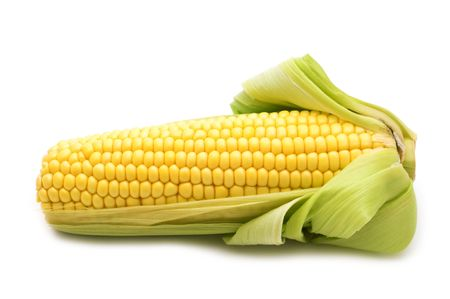 shucked: fresh corn on white background
