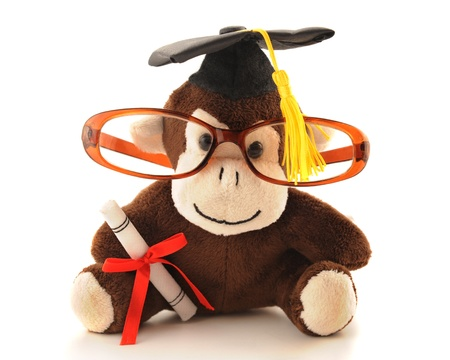 An adorable monkey with graduation cap and diploma and wearing a student Stock Photo - 13531585